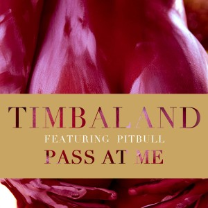 Timbaland Pass at Me feat Pitbull
